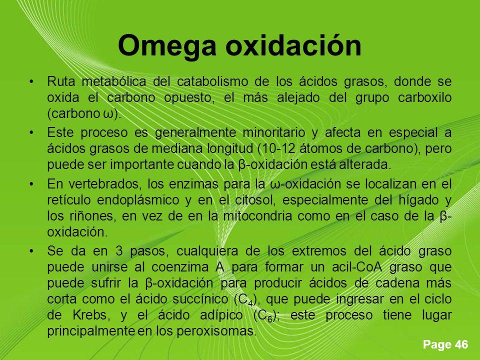 Omega oxidación