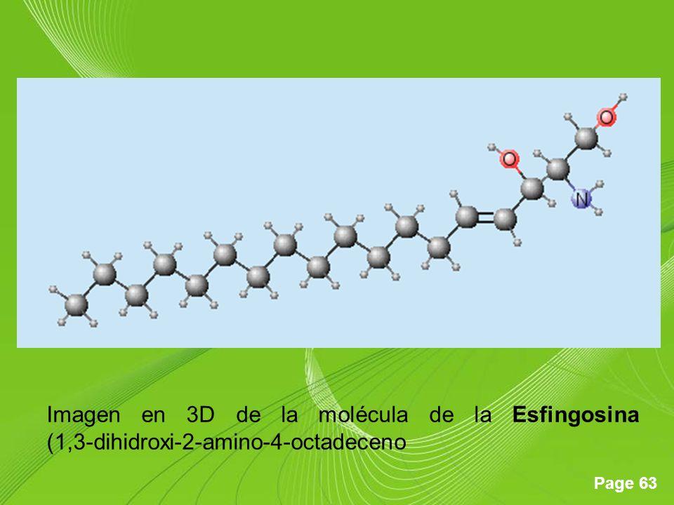Imagen en 3D de la molécula de la Esfingosina (1,3-dihidroxi-2-amino-4-octadeceno