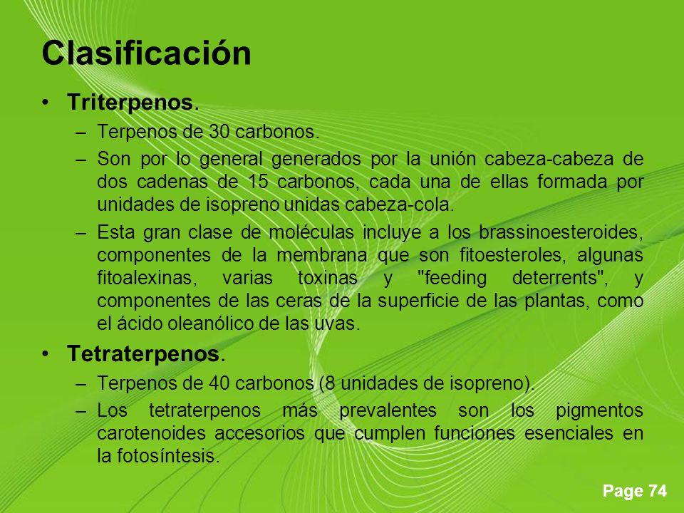 Clasificación Triterpenos. Tetraterpenos. Terpenos de 30 carbonos.