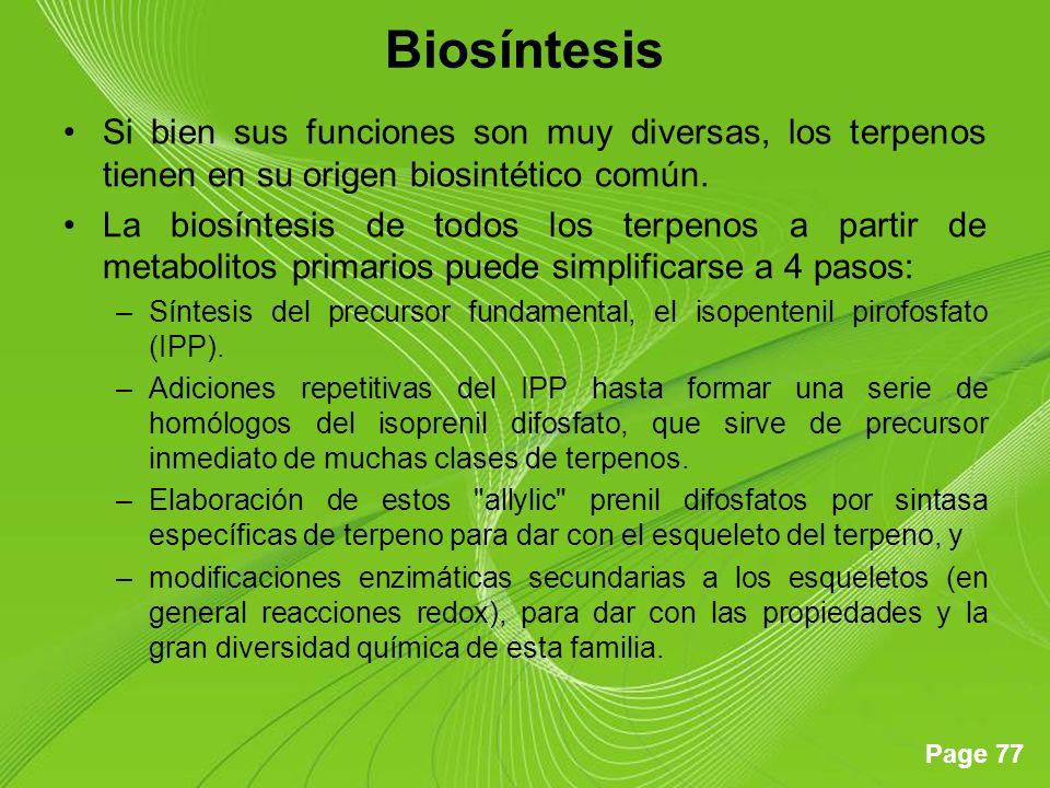 Biosíntesis Si bien sus funciones son muy diversas, los terpenos tienen en su origen biosintético común.