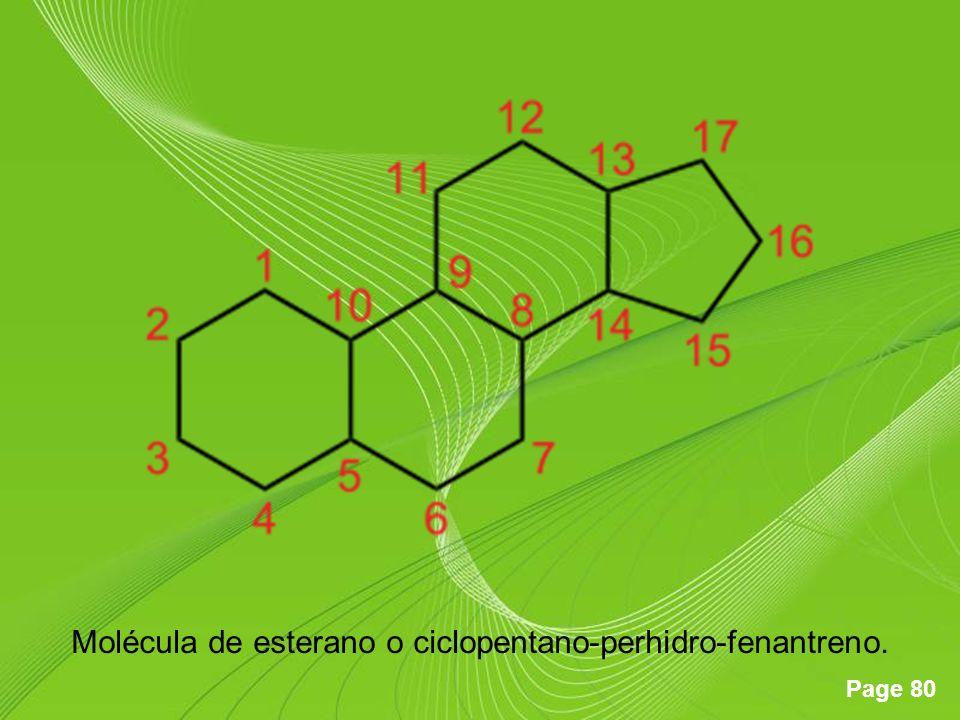 Molécula de esterano o ciclopentano-perhidro-fenantreno.