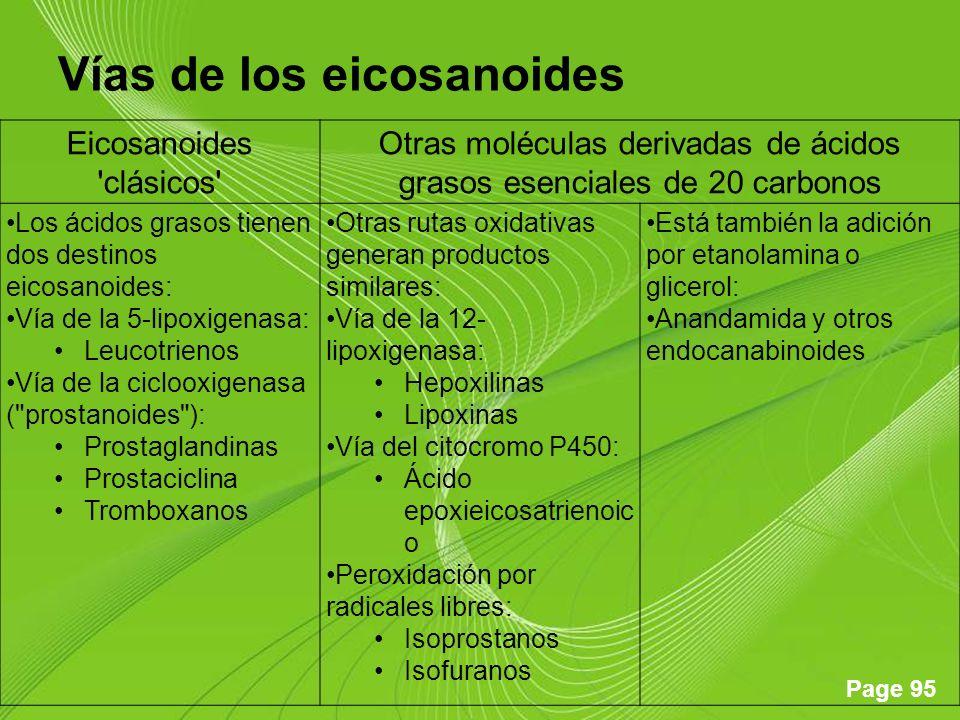 Vías de los eicosanoides