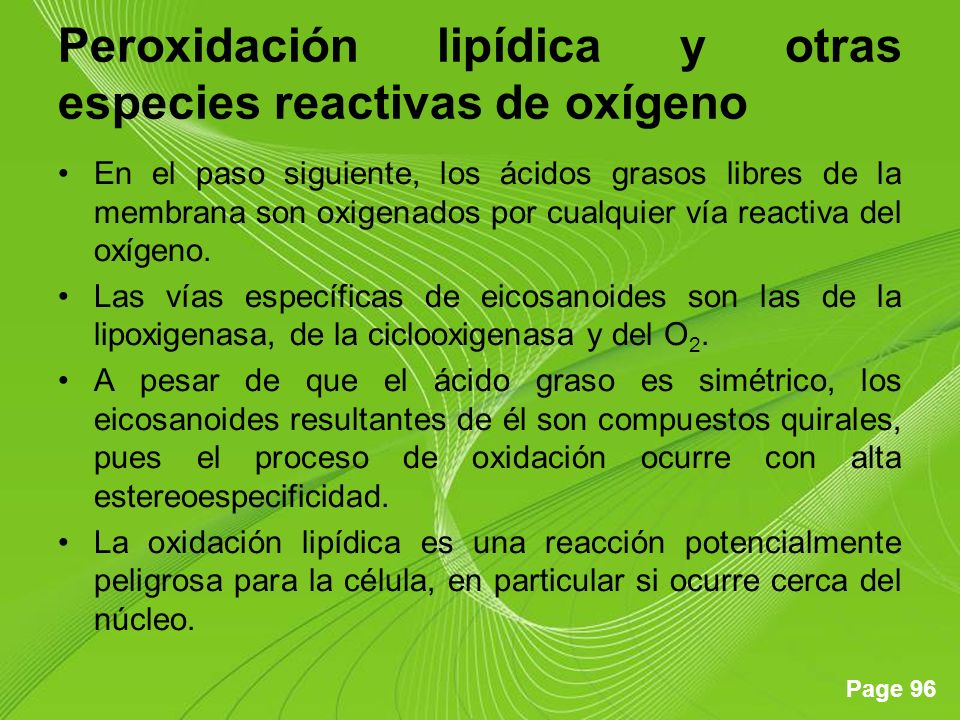 Peroxidación lipídica y otras especies reactivas de oxígeno