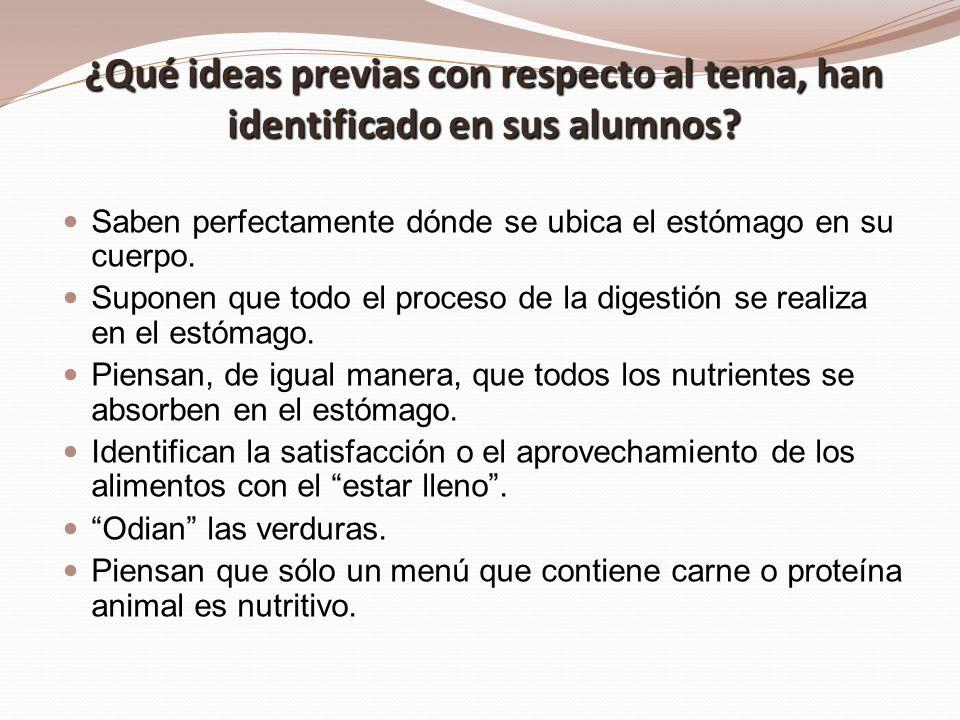 ¿Qué ideas previas con respecto al tema, han identificado en sus alumnos