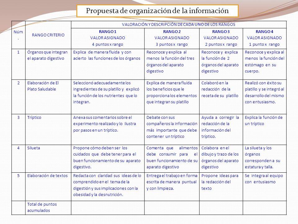 Propuesta de organización de la información