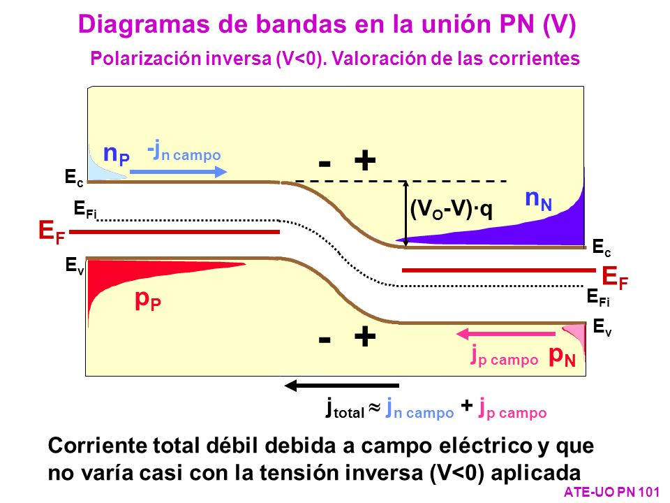 Polarización inversa (V<0). Valoración de las corrientes