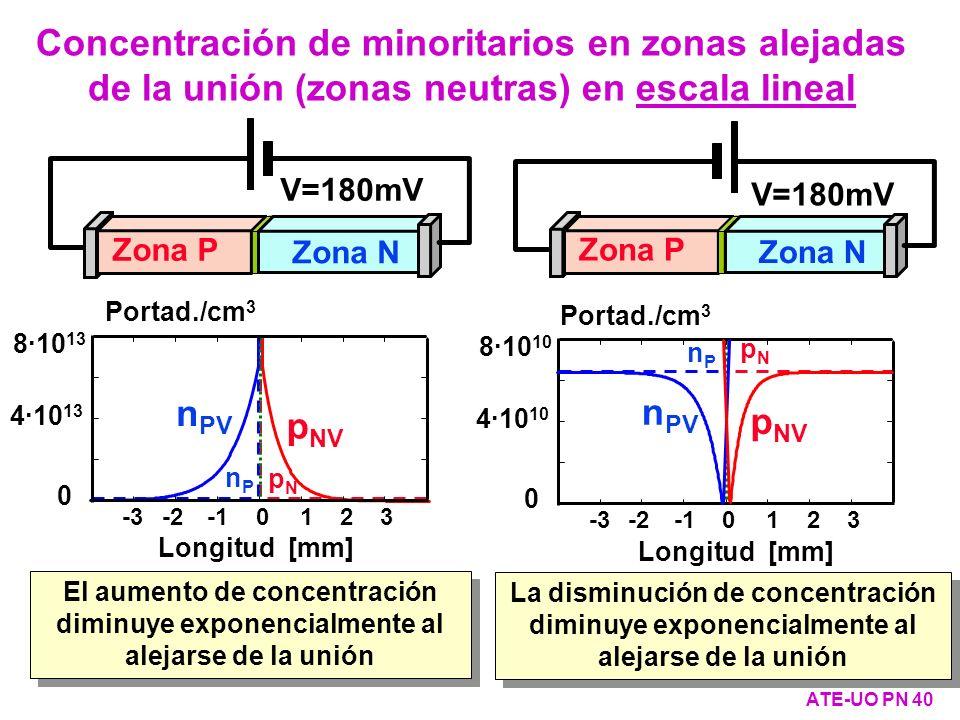 Concentración de minoritarios en zonas alejadas de la unión (zonas neutras) en escala lineal