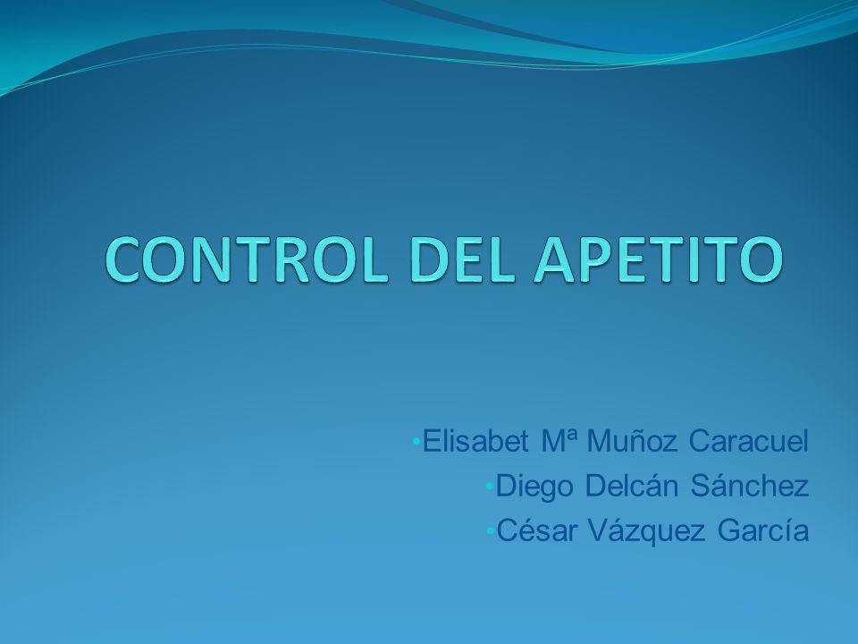 Elisabet Mª Muñoz Caracuel Diego Delcán Sánchez César Vázquez García