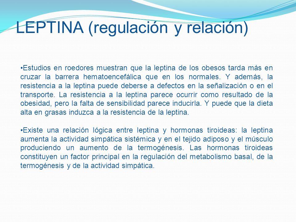 LEPTINA (regulación y relación)