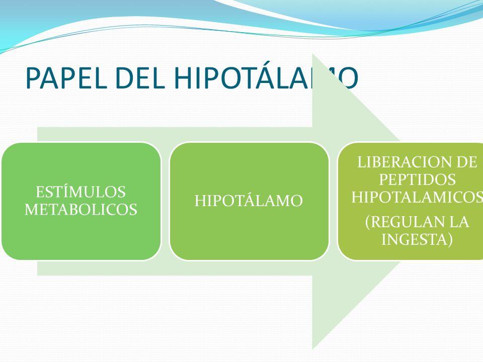 PAPEL DEL HIPOTÁLAMO LIBERACION DE PEPTIDOS HIPOTALAMICOS
