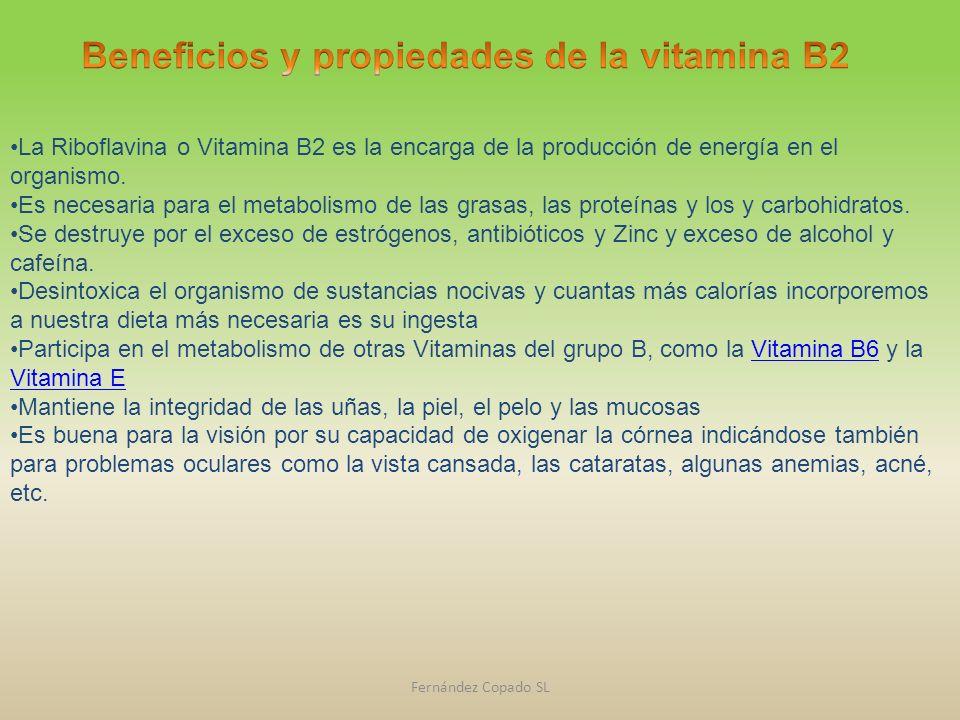 Beneficios y propiedades de la vitamina B2