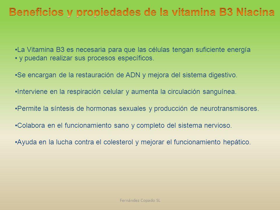 Beneficios y propiedades de la vitamina B3 Niacina