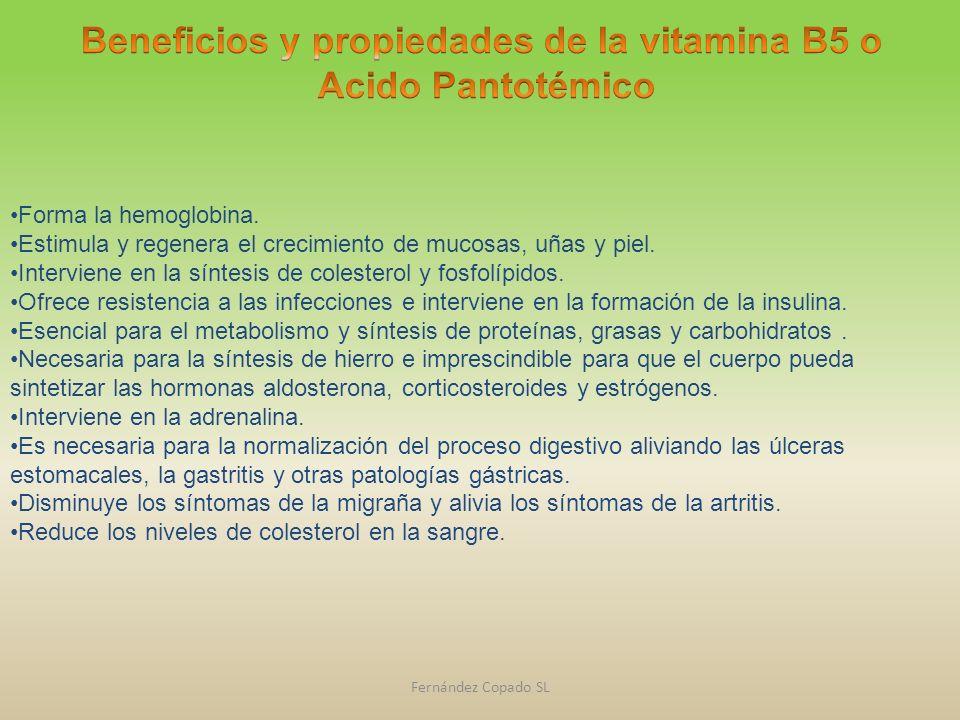 Beneficios y propiedades de la vitamina B5 o