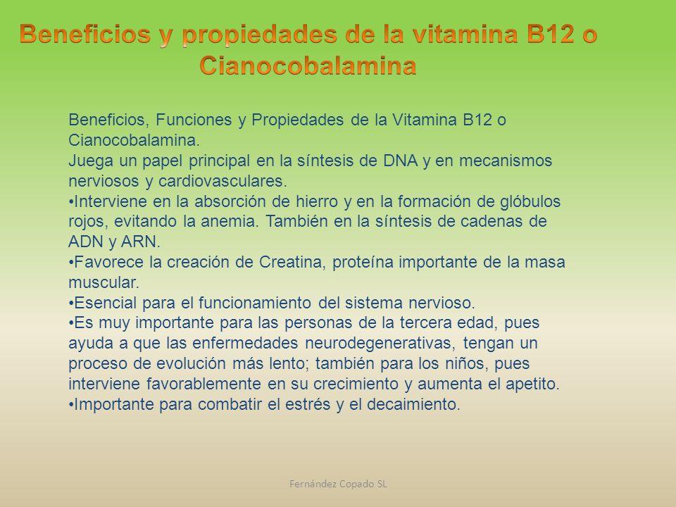 Beneficios y propiedades de la vitamina B12 o