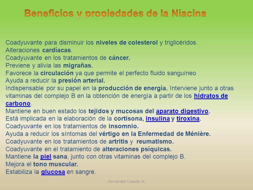 Beneficios y propiedades de la Niacina