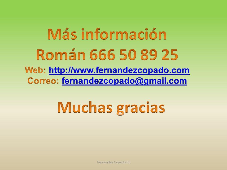 Web: http://www.fernandezcopado.com Correo: fernandezcopado@gmail.com