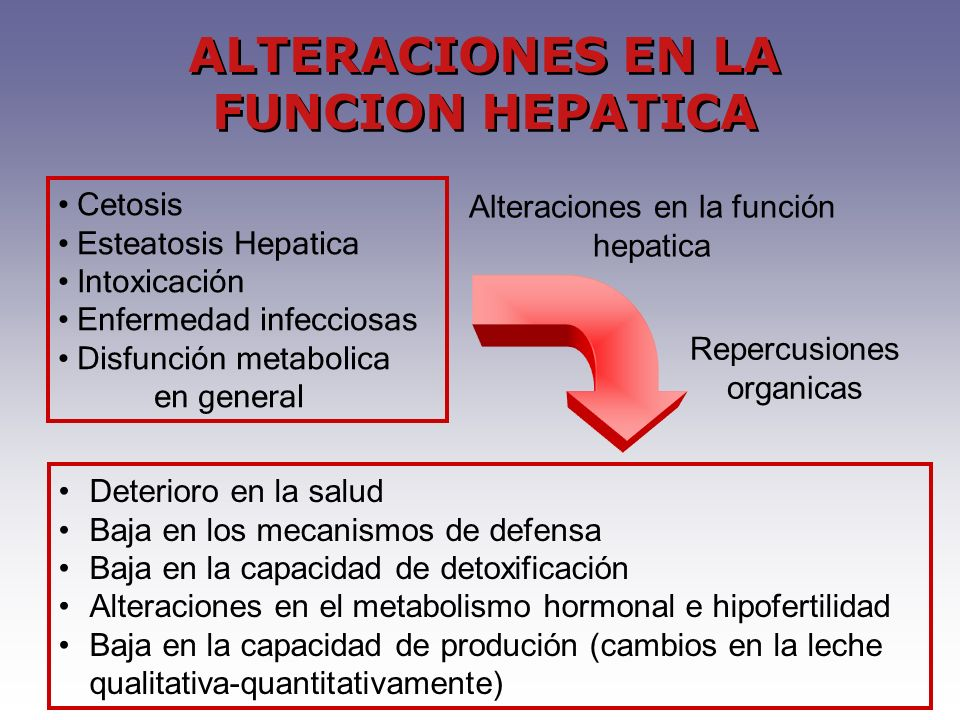 ALTERACIONES EN LA FUNCION HEPATICA