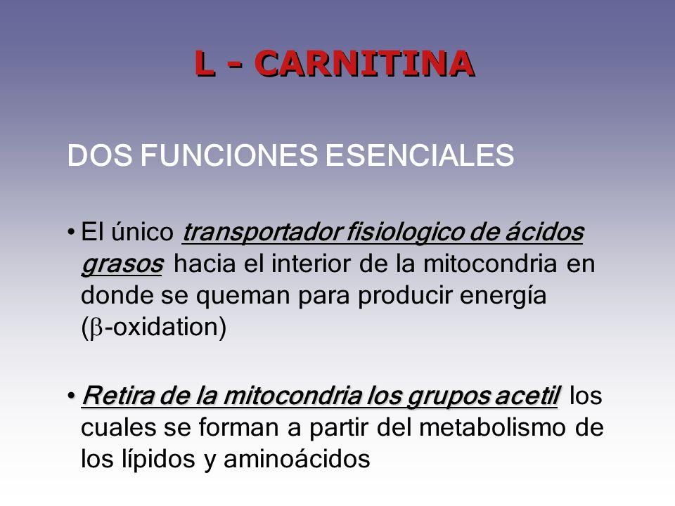 L - CARNITINA DOS FUNCIONES ESENCIALES