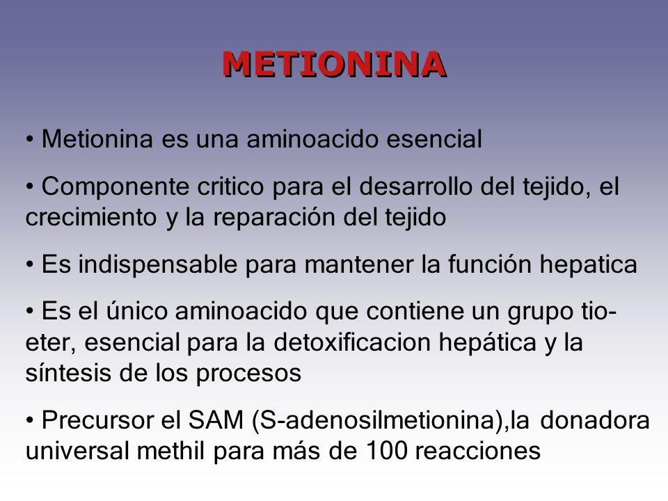 METIONINA Metionina es una aminoacido esencial