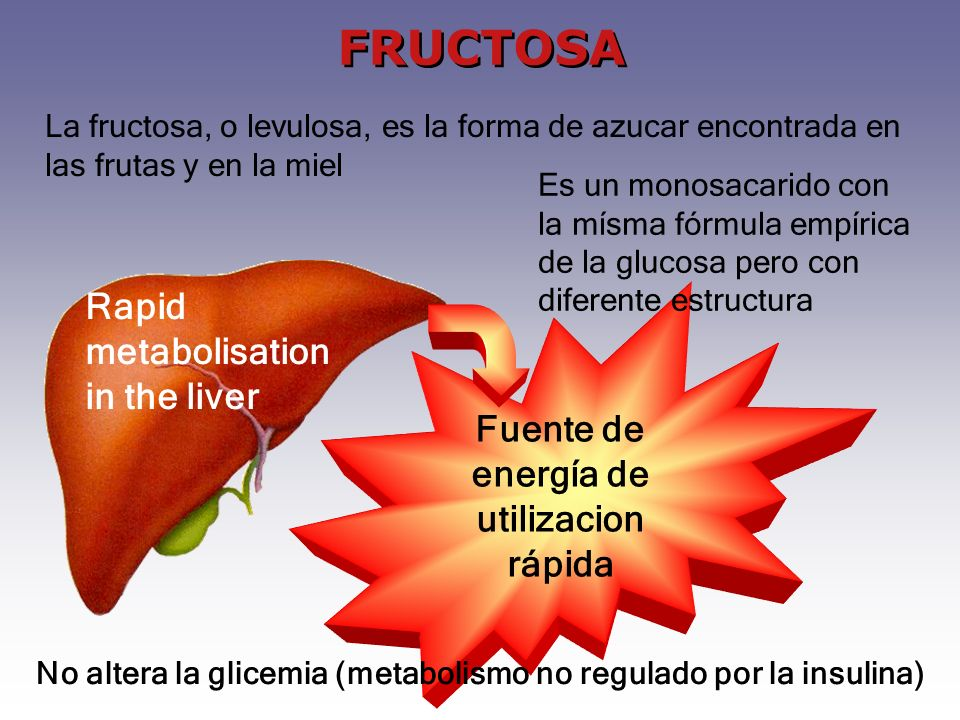 FRUCTOSA Rapid metabolisation in the liver
