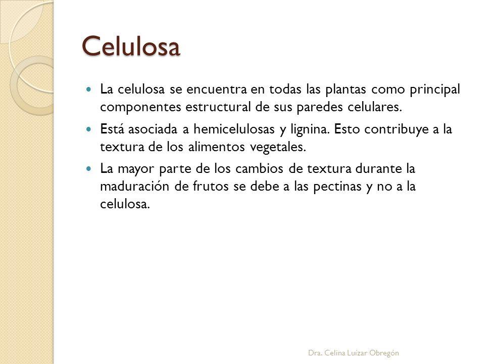 Celulosa La celulosa se encuentra en todas las plantas como principal componentes estructural de sus paredes celulares.