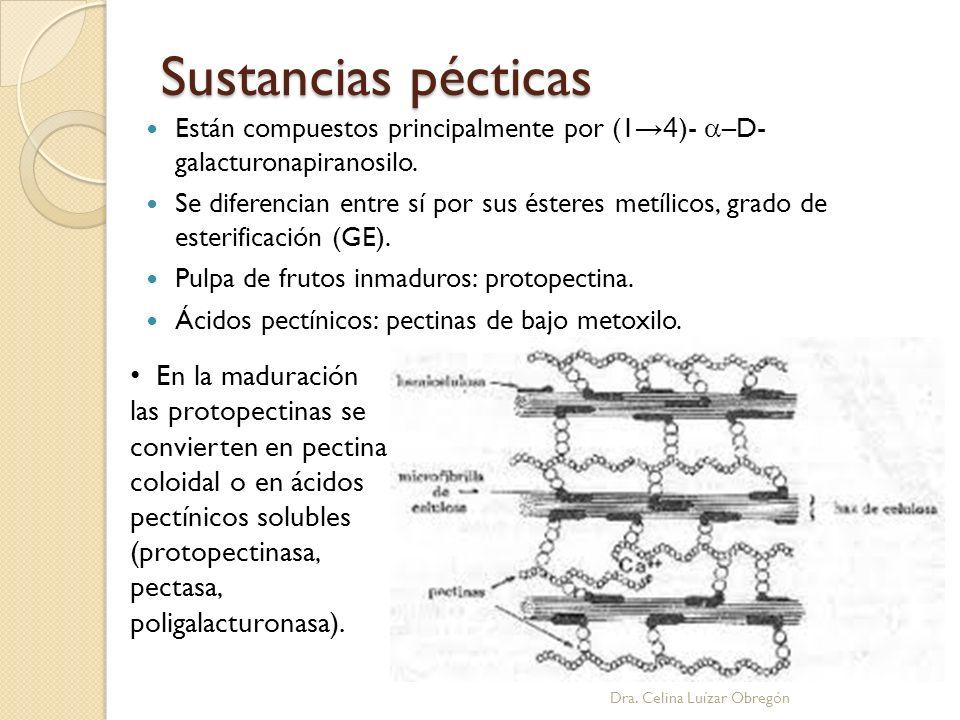 Sustancias pécticas Están compuestos principalmente por (1→4)- a–D- galacturonapiranosilo.