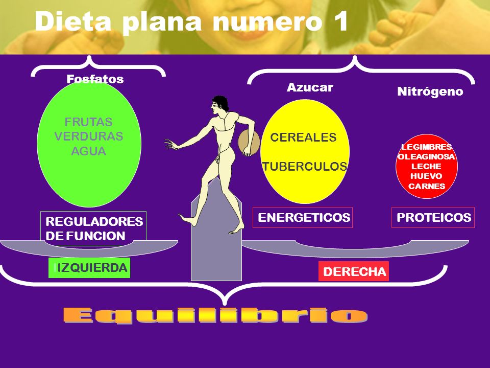 Dieta plana numero 1 Equilibrio Fosfatos FRUTAS VERDURAS AGUA Azucar