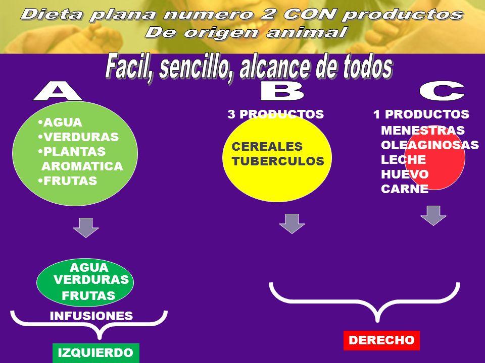 Dieta plana numero 2 CON productos De origen animal