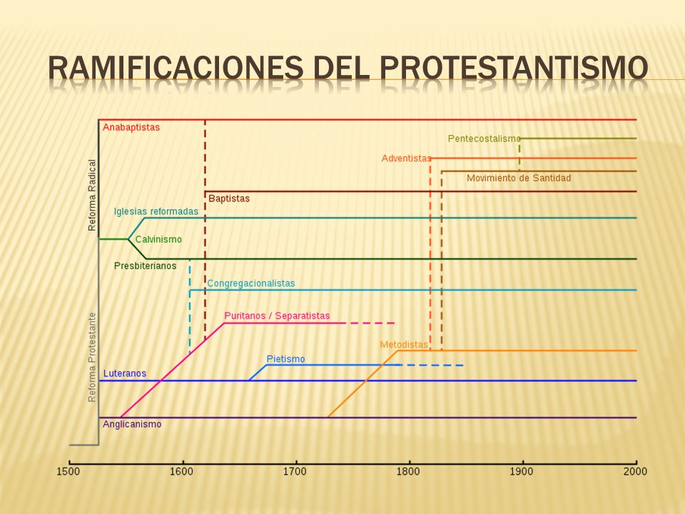Ramificaciones del protestantismo