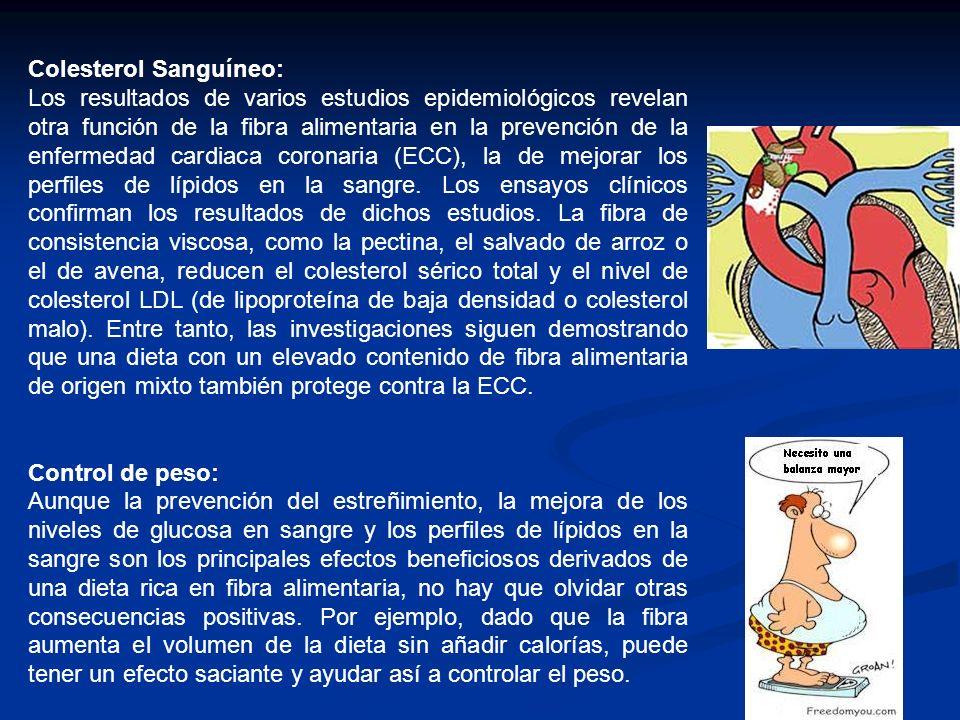Colesterol Sanguíneo: