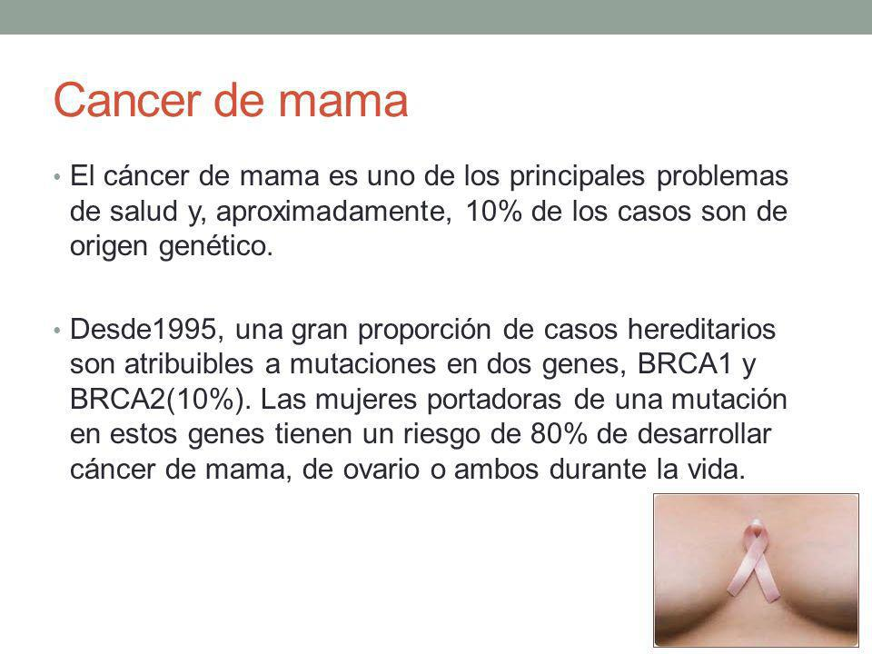 Cancer de mama El cáncer de mama es uno de los principales problemas de salud y, aproximadamente, 10% de los casos son de origen genético.