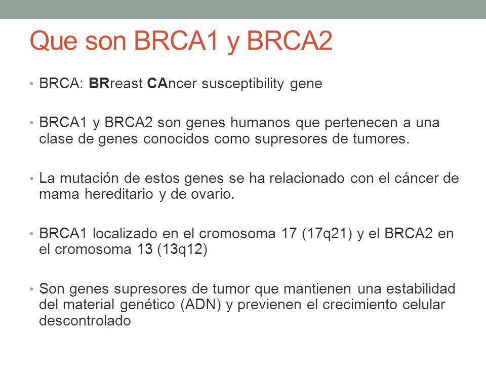 Que son BRCA1 y BRCA2 BRCA: BRreast CAncer susceptibility gene