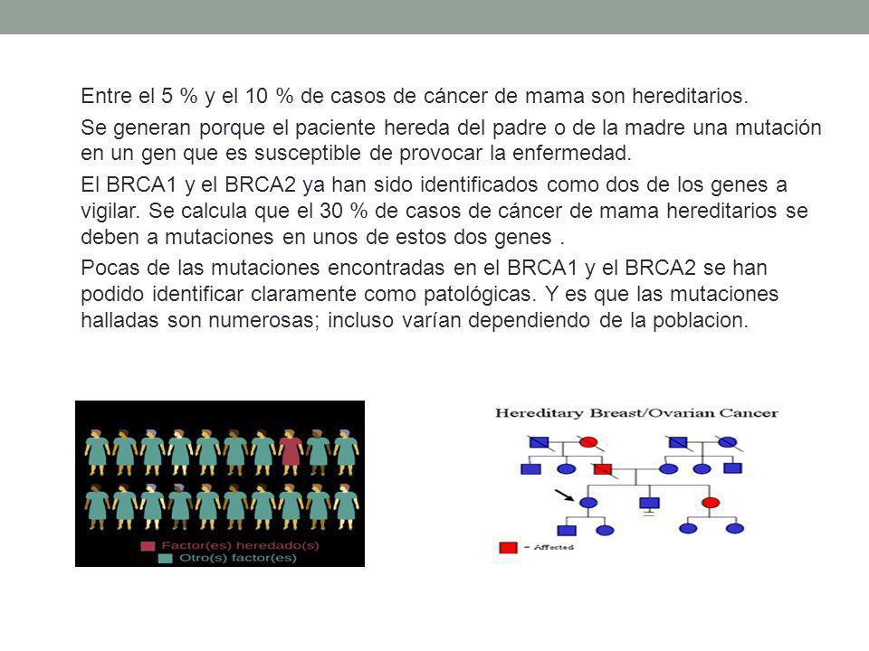 Entre el 5 % y el 10 % de casos de cáncer de mama son hereditarios.