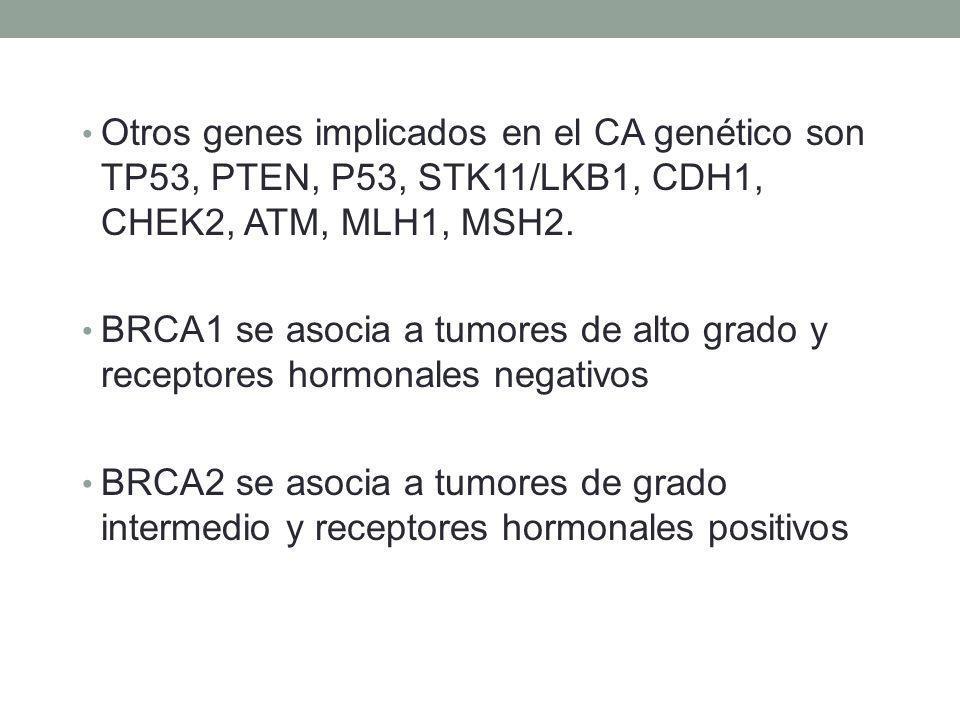 Otros genes implicados en el CA genético son TP53, PTEN, P53, STK11/LKB1, CDH1, CHEK2, ATM, MLH1, MSH2.