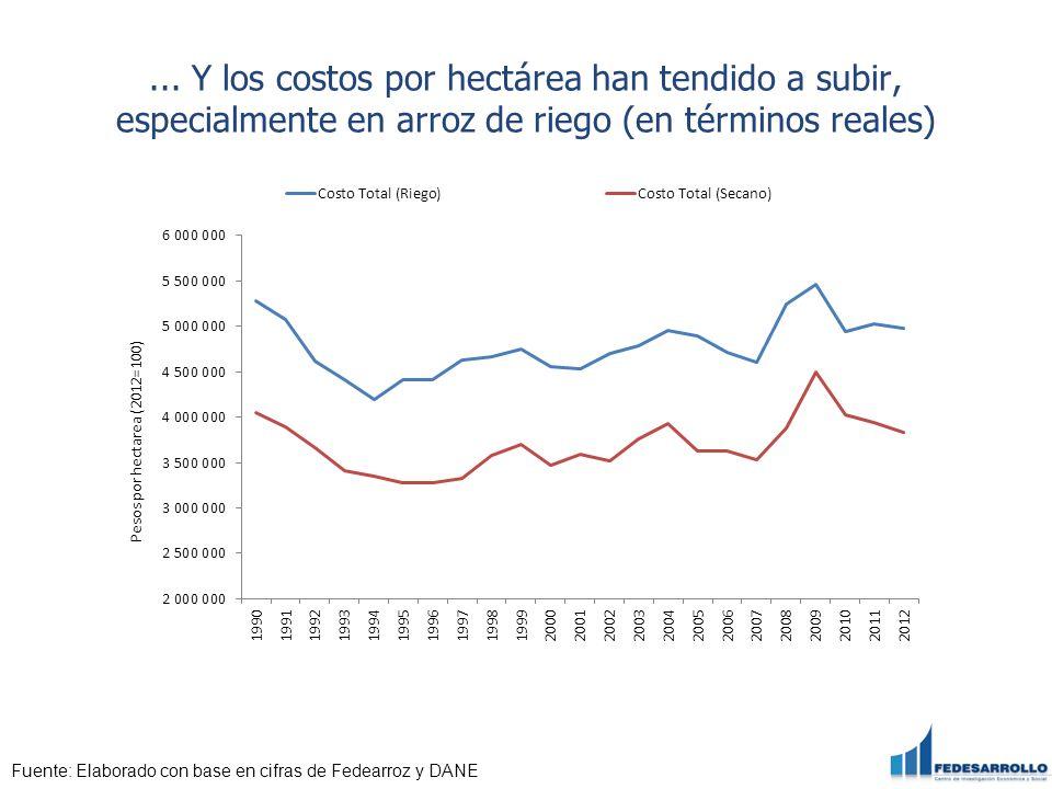... Y los costos por hectárea han tendido a subir, especialmente en arroz de riego (en términos reales)