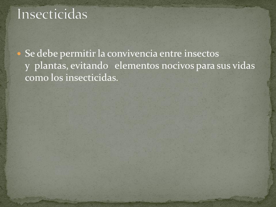 Insecticidas Se debe permitir la convivencia entre insectos y plantas, evitando elementos nocivos para sus vidas como los insecticidas.