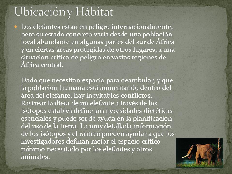 Ubicación y Hábitat