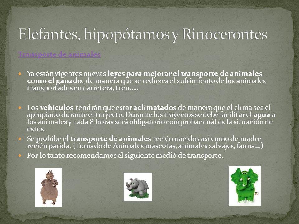 Elefantes, hipopótamos y Rinocerontes