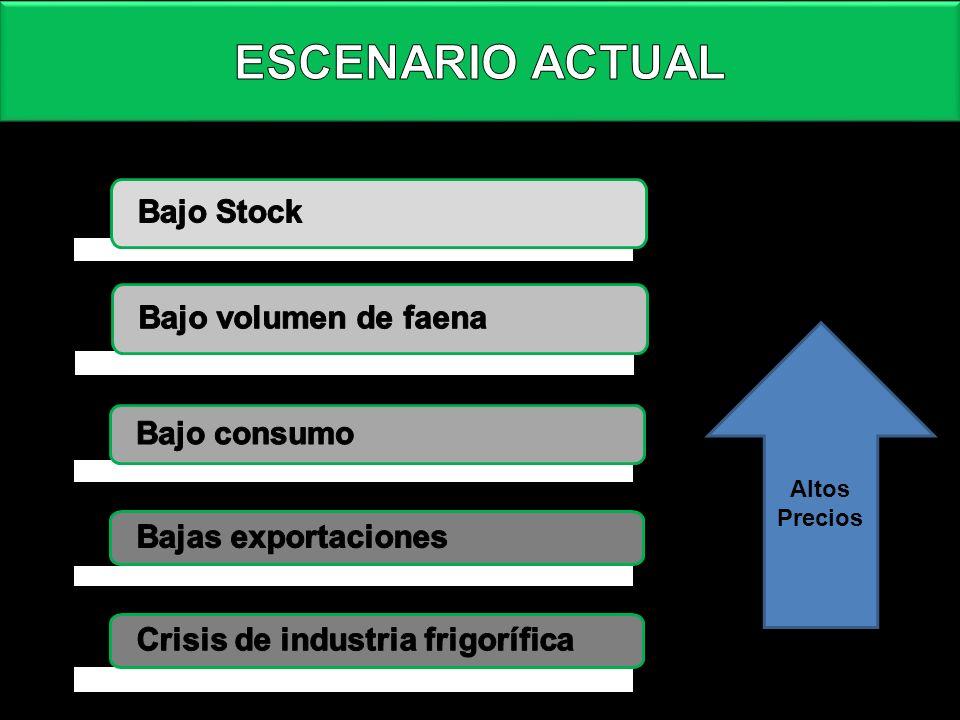 ESCENARIO ACTUAL Bajo Stock Bajo volumen de faena Bajo consumo