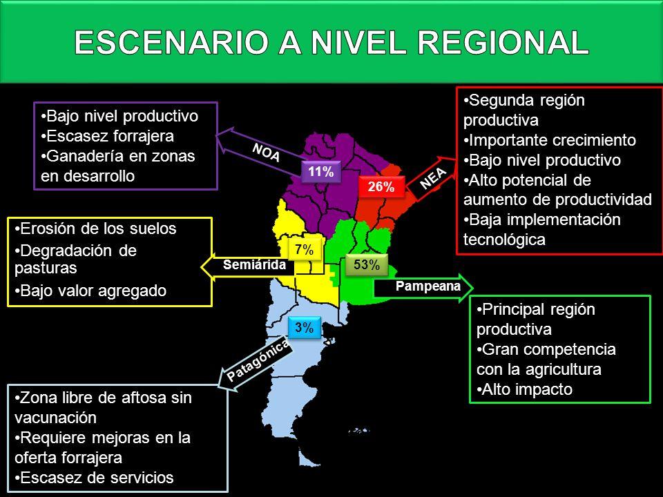 ESCENARIO A NIVEL REGIONAL