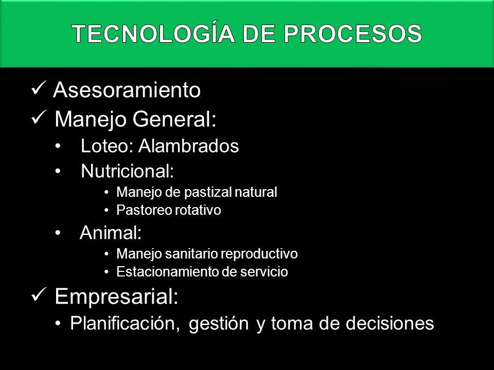 TECNOLOGÍA DE PROCESOS
