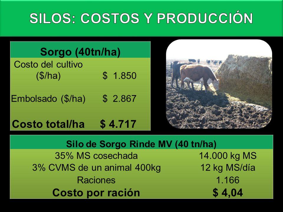SILOS: COSTOS Y PRODUCCIÓN Silo de Sorgo Rinde MV (40 tn/ha)