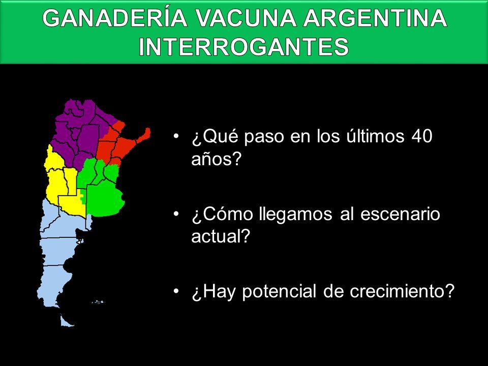 GANADERÍA VACUNA ARGENTINA