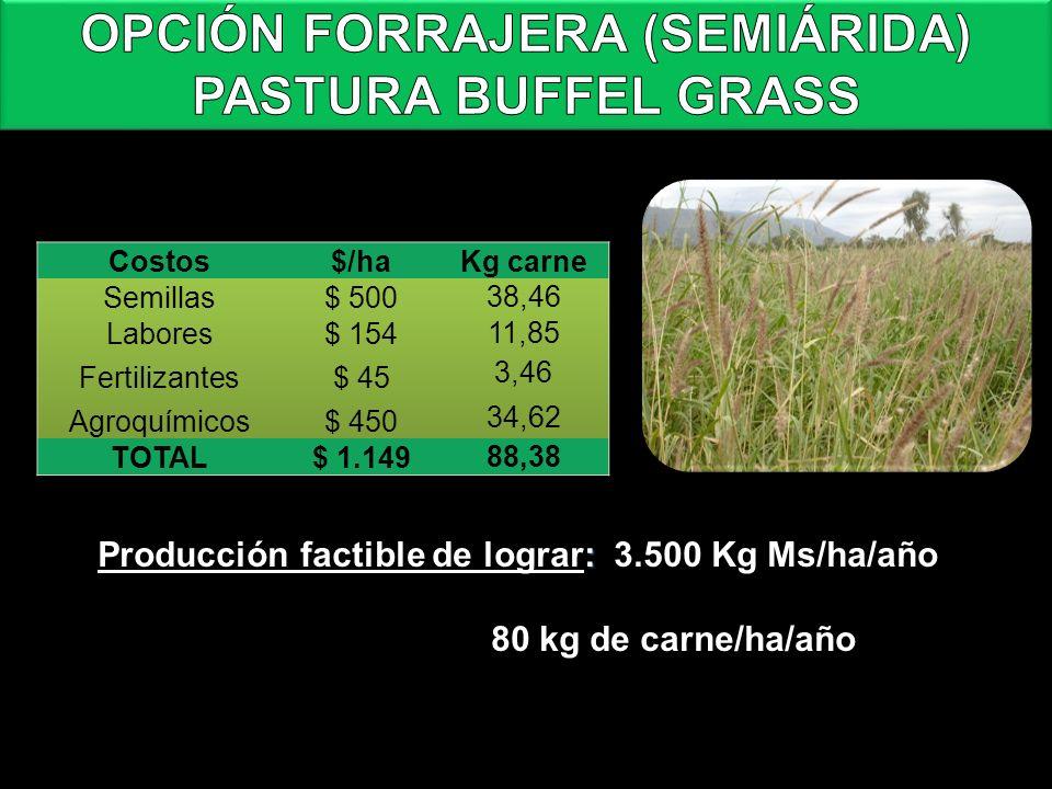 Costo de implantación del Buffel grass y rendimiento+