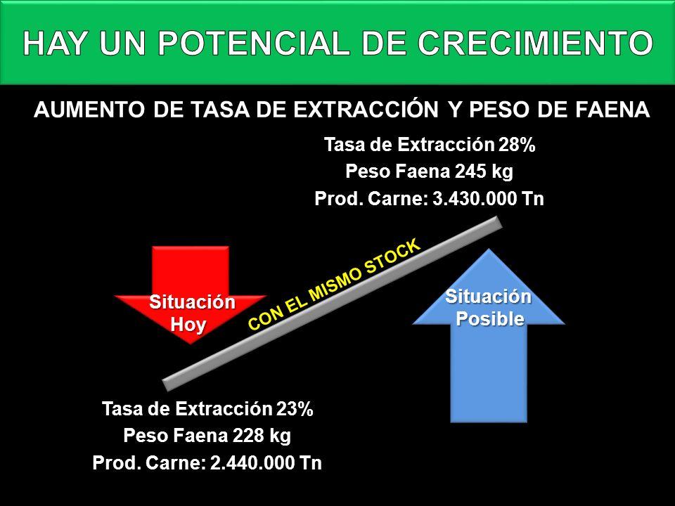 HAY UN POTENCIAL DE CRECIMIENTO