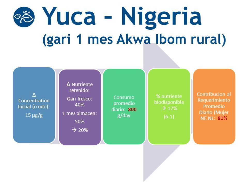 Yuca – Nigeria (gari 1 mes Akwa Ibom rural)