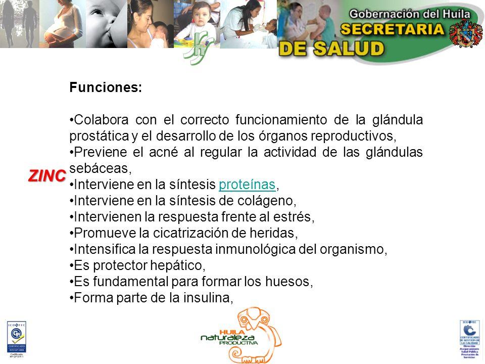 Funciones: Colabora con el correcto funcionamiento de la glándula prostática y el desarrollo de los órganos reproductivos,