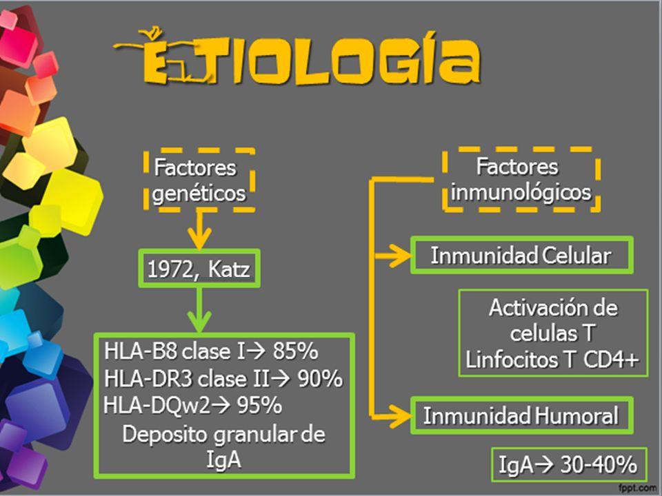 e tiología Factores Factores genéticos inmunológicos Inmunidad Celular