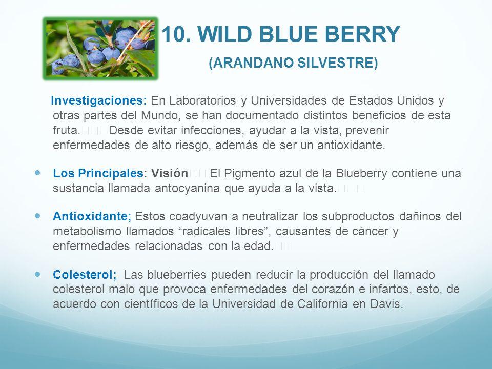 10. Wild Blue Berry (Arandano Silvestre)