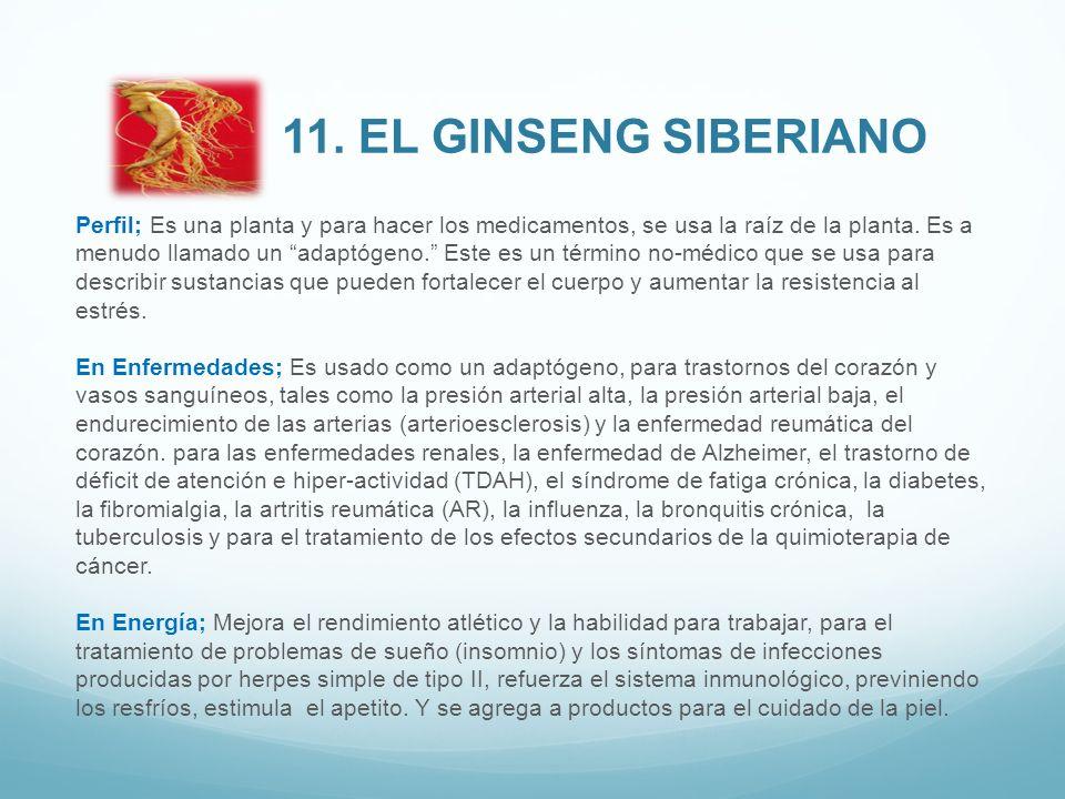 11. El Ginseng siberiano